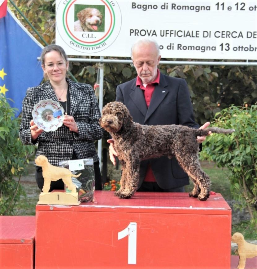 DAMO DELLA CAVEJA (I) -  BIS Puppy Rad. Bagno'19; NJV-20,NV-20. See News.